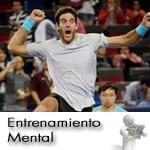 Del Potro tiene tenis para ser el numero uno, pero...
